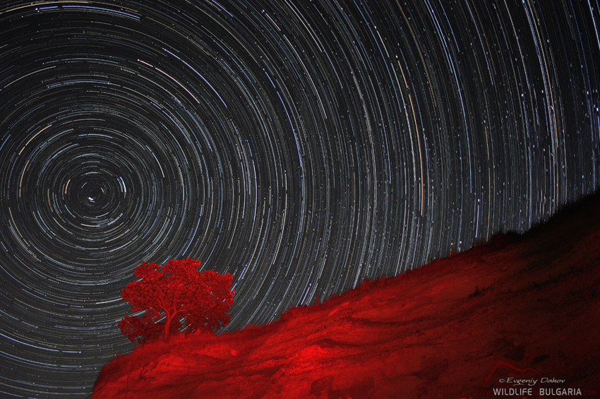 Star-Trails-II