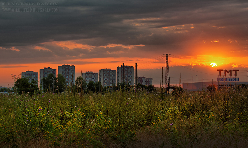 HDR-Sunset